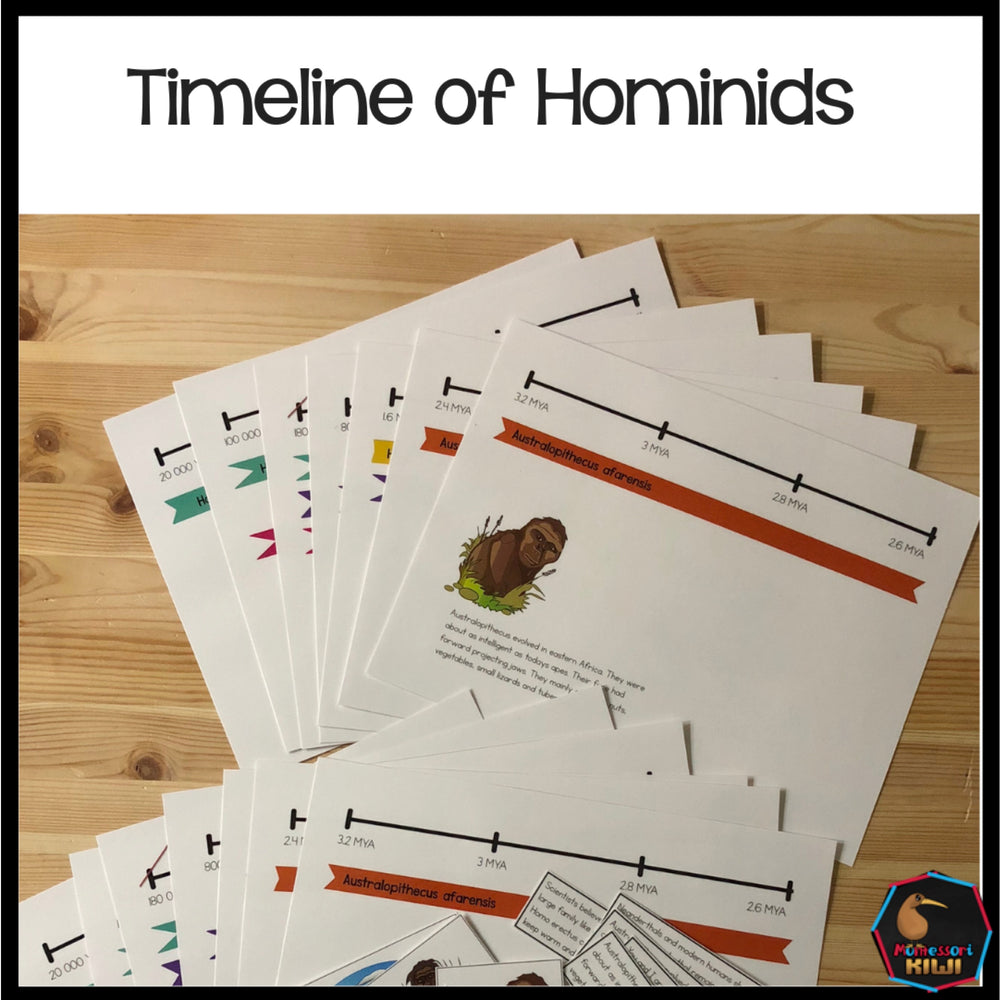 Timeline of early Hominids - montessorikiwi