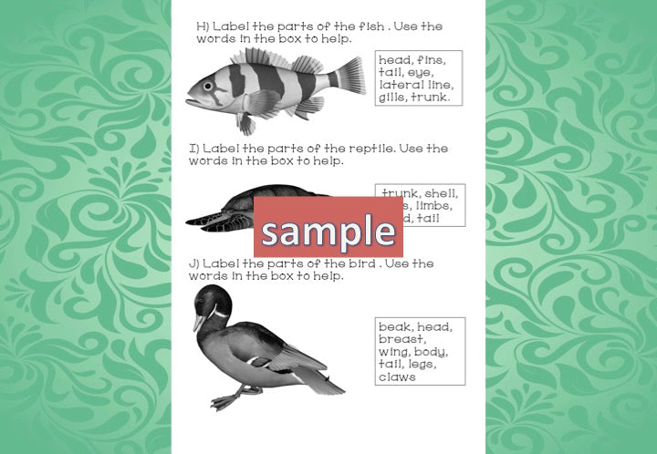 Zoology Test for Assessment - montessorikiwi