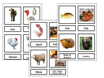 Plants and animals uses and resources - montessorikiwi