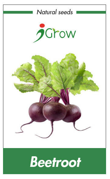 Naturally Treated Organic Beet Root Seeds (100 seeds)