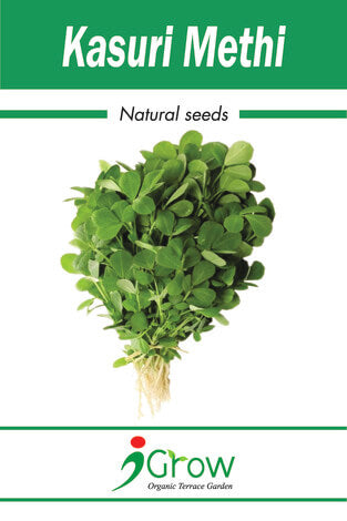 Naturally Treated Organic Kasuri Methi Seeds 100 Grms