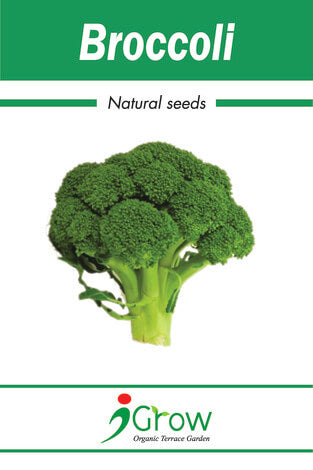 Naturally Treated Organic Broccoli (125Seeds)