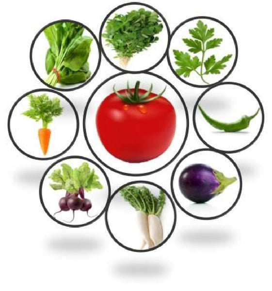 100% Organic seeds for Kitchen vegetable garden. Combo Set of 9 Packs of Organic Seeds