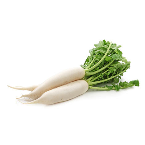 Naturally Treated Organic Radish 250 Seeds