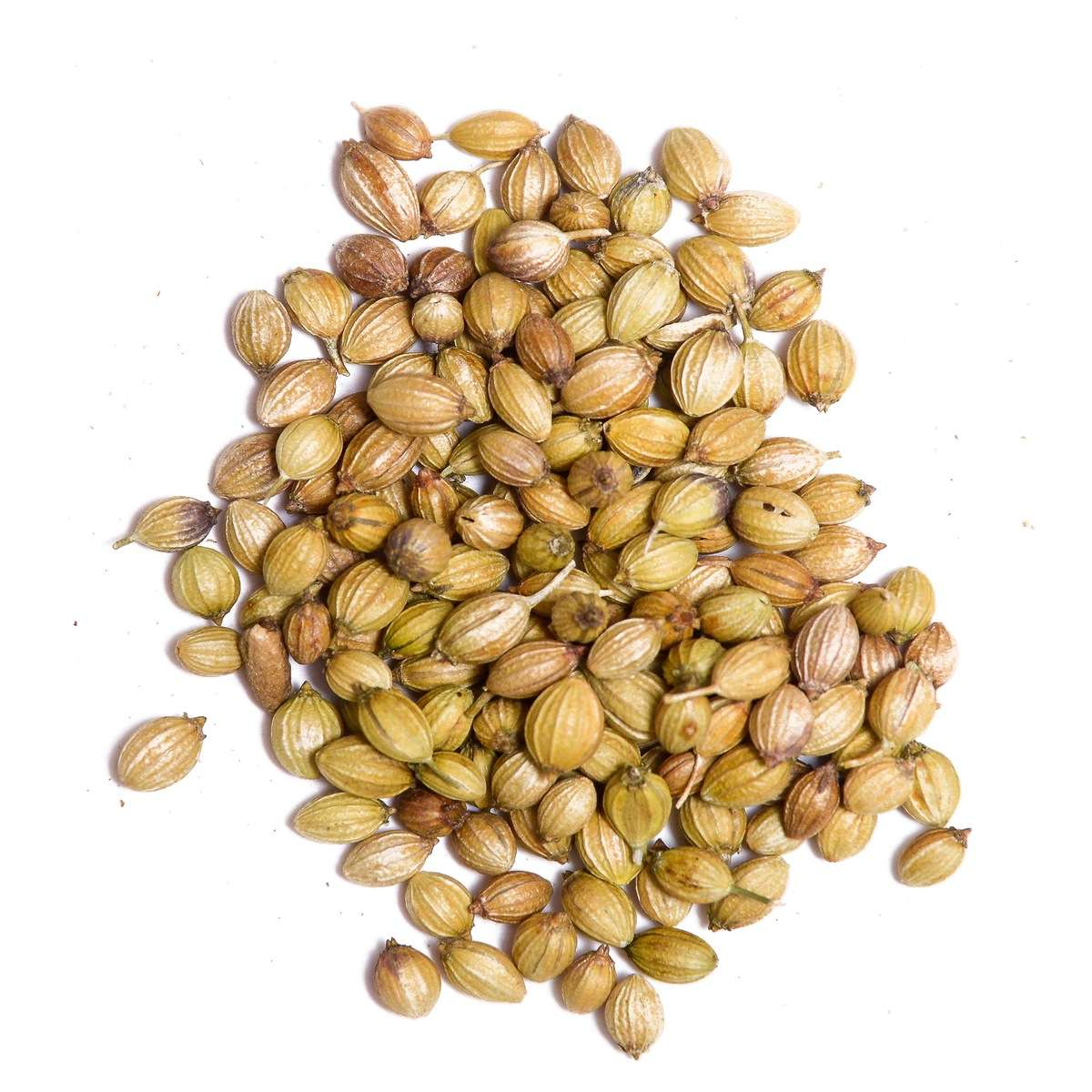 Naturally Treated Organic Coriander Seeds (100 Grms)