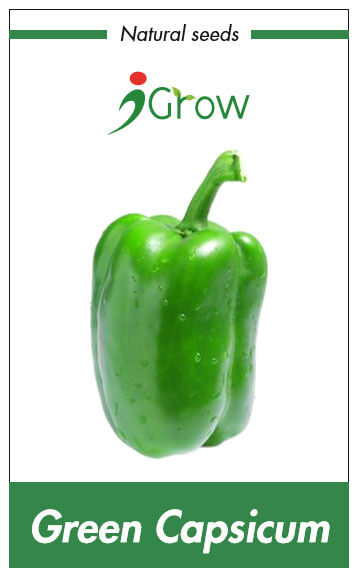 Naturally Treated Organic Capsicum (125 Seeds)