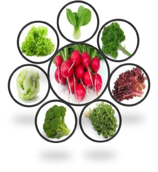 Exotic Vegetables Seeds Combo Set of 8 Pack