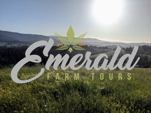 A Brief History of California's Legendary Emerald Triangle