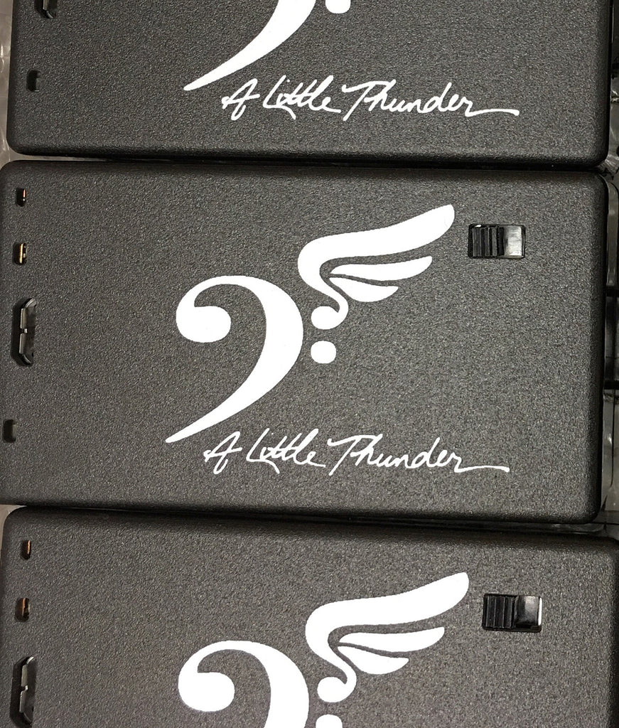 """A Little Thunder""  Pick Ups!  The star of the 2015 NAMM Show!"