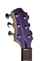Relish Platinum Rainbow - Relish Guitars - Heartbreaker Guitars