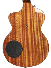 Rick Turner Model 1 Custom Amazon Rosewood - Rick Turner Guitars - Heartbreaker Guitars