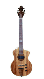 Rick Turner Model 1 Limited Icon Series Absolutely Mint - Rick Turner Guitars - Heartbreaker Guitars