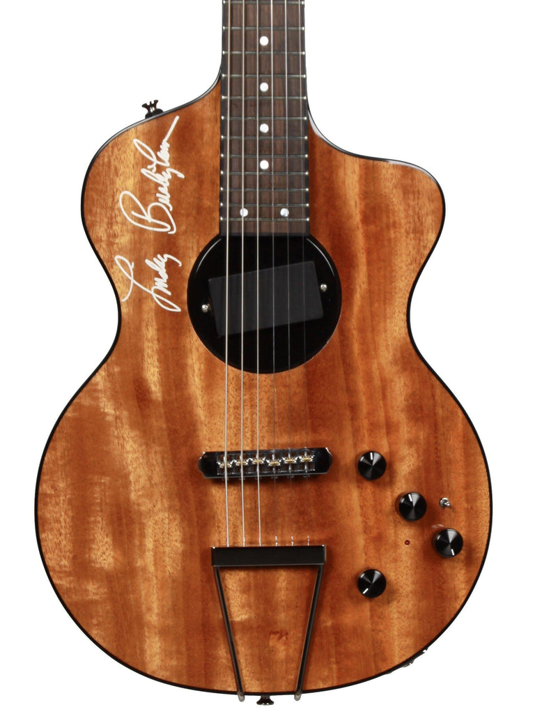Rick Turner 40th Anniversary Lindsey Buckingham August Delivery - Rick Turner Guitars - Heartbreaker Guitars