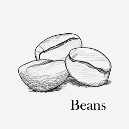 Bean & Leaf for one- Beans - NZ coffee and tea subscription box