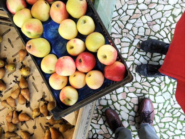 Apples and Pears Estremoz Market