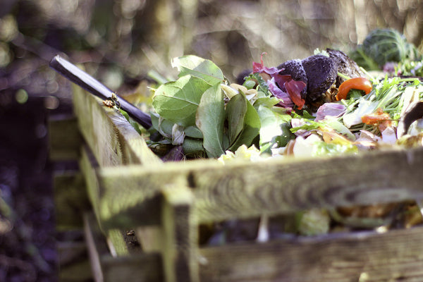 Close up of compost bin