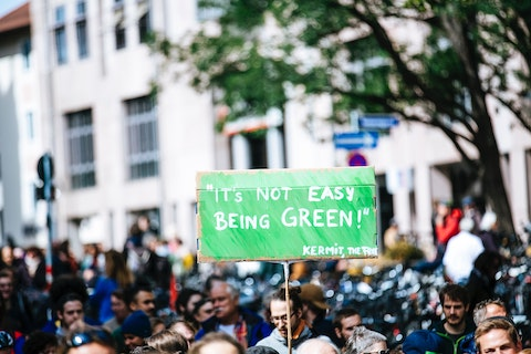 """It's Not Easy Being Green"" Sign at Protest"