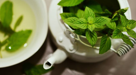 Peppermint Tea and Pot
