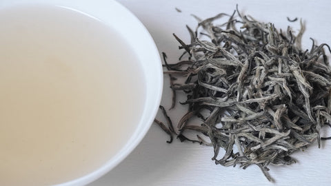 White Tea Fuding Loose Leaf