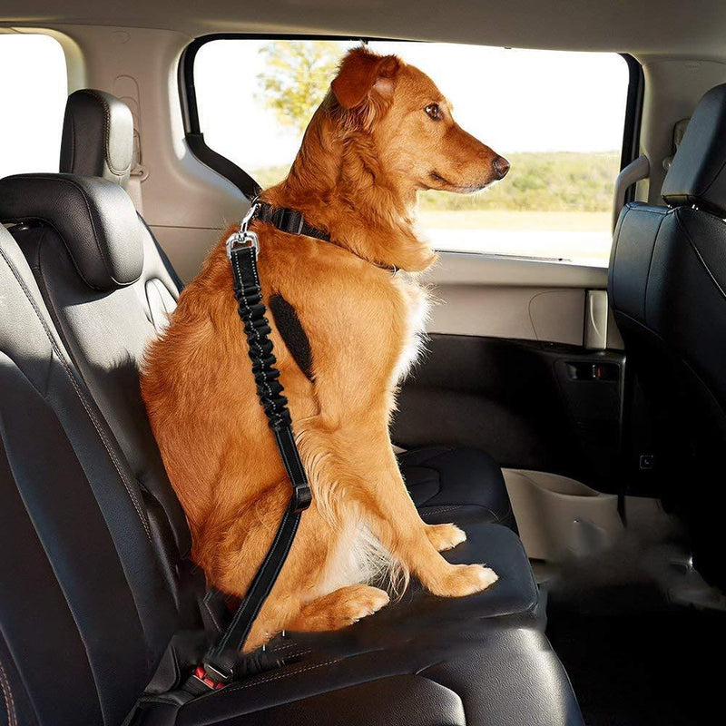 Hilifebox™ Dog Leash Car Seatbelt Buckle