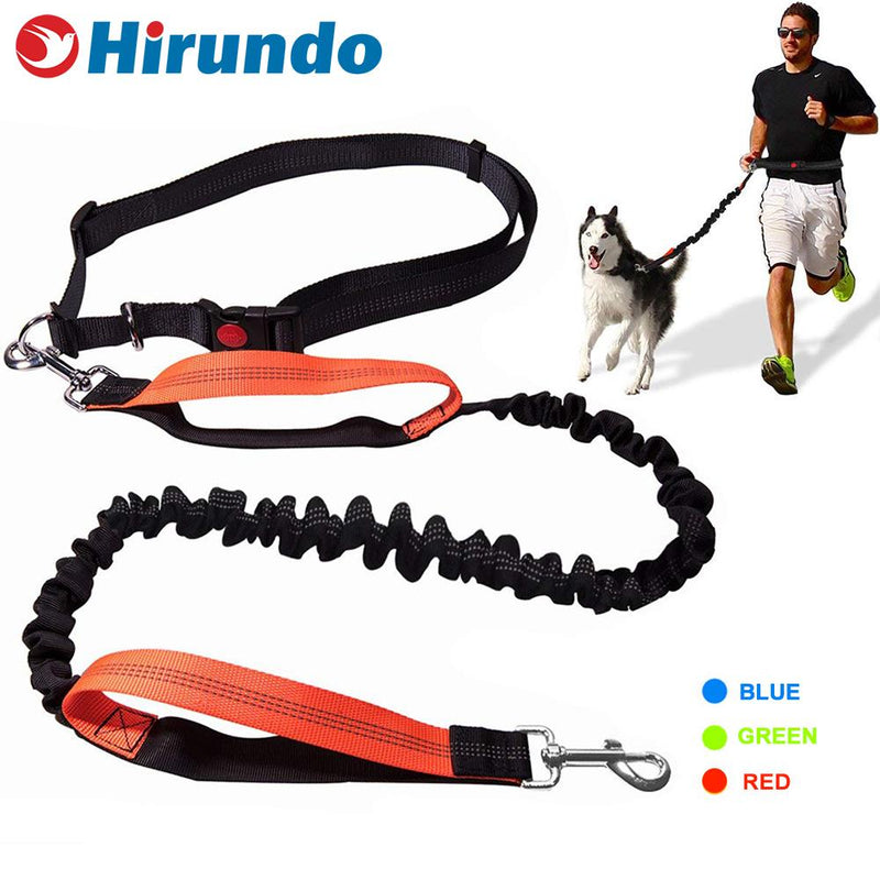 Hirundo Handsfree Bungee Dog Leash