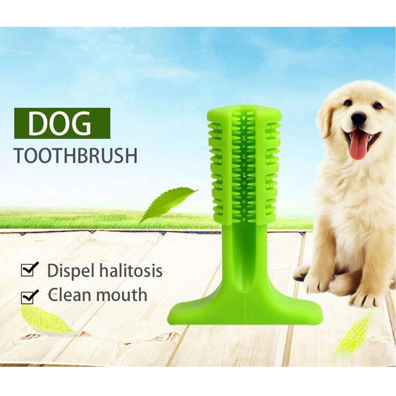 Hirundo Pet Dog Toothbrush
