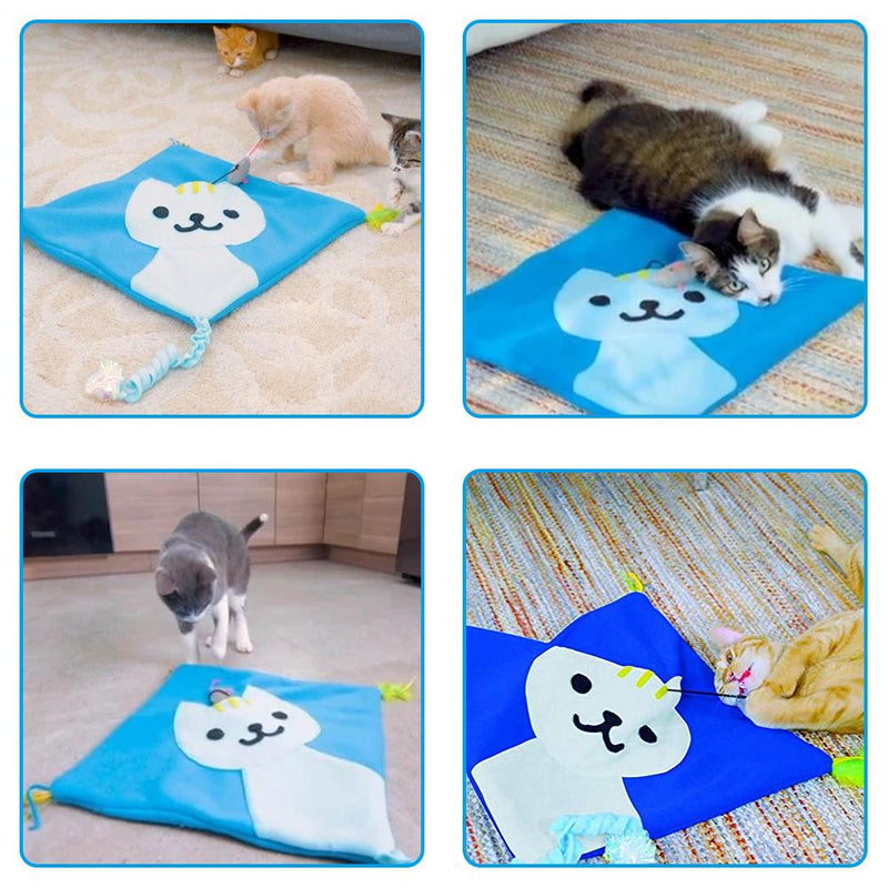 Interesting Toy Mat For Cat