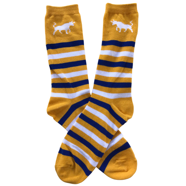 Bull Striped Socks - Multi Colour