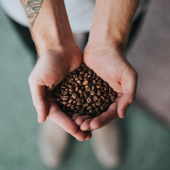 Latino Blend by Caffeine Roasters. All You need is really good coffee: full body, perfect balance - black chocolate and brazil nuts subtly tango with berries and fruit notes.