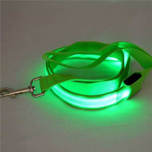 USB RECHARGEABLE LED 3ft LEASH Pet Dog Nylon Clip-on lead Flashing Light Safety