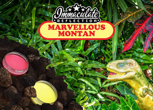 Marvellous Montan Car Wax
