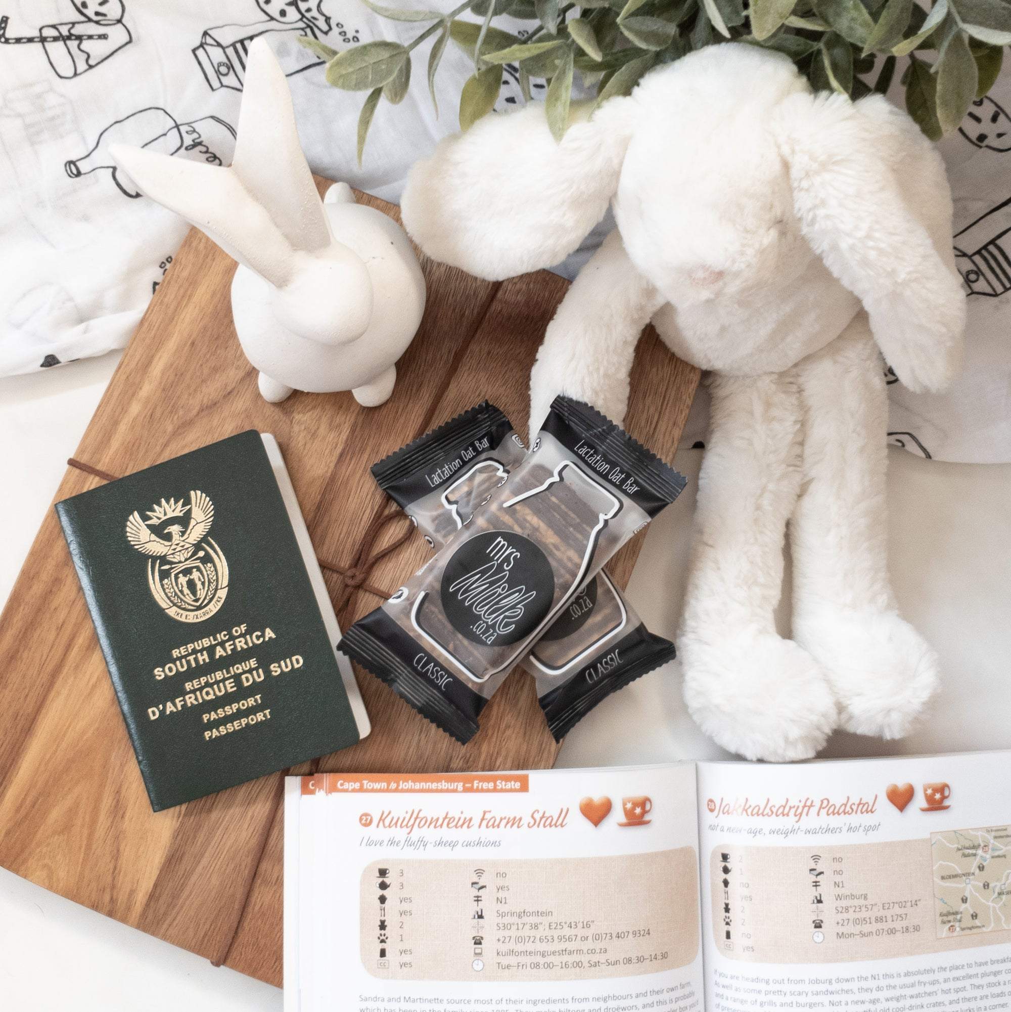 A few tips for traveling with a breastfed baby