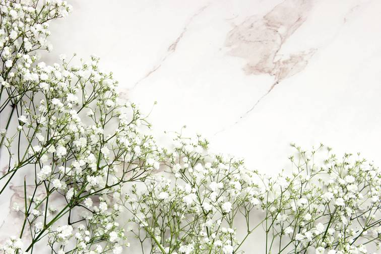 Baby Breath Flowers and what they represent
