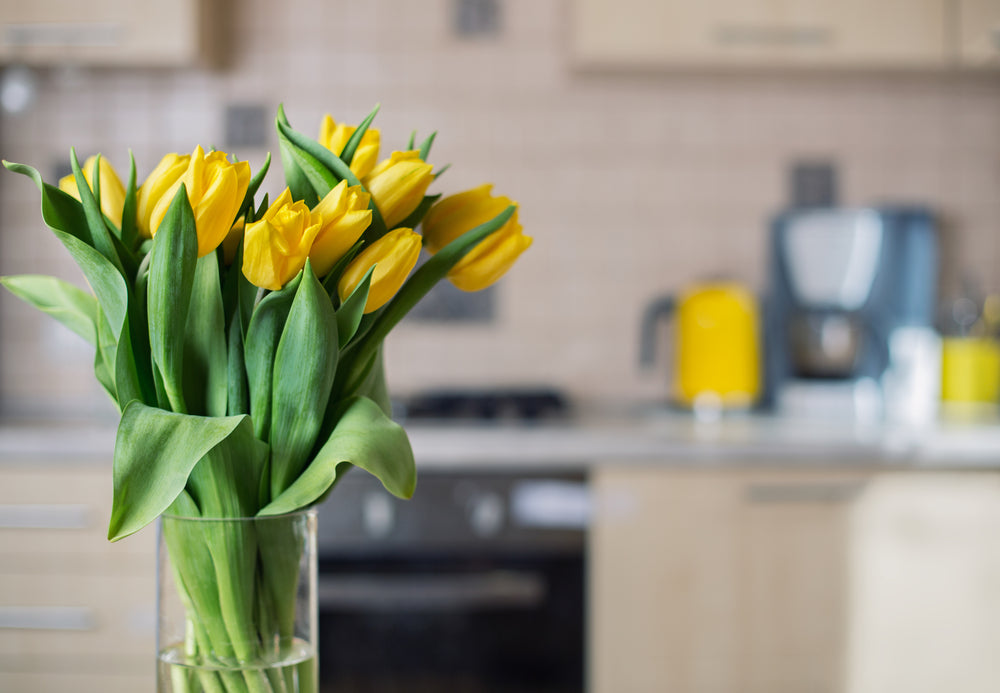 5 Most Fragrant Flowers to Add a Pleasant Scent to Your Home