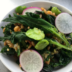 Kale Salad with Fava Beans and Radishes