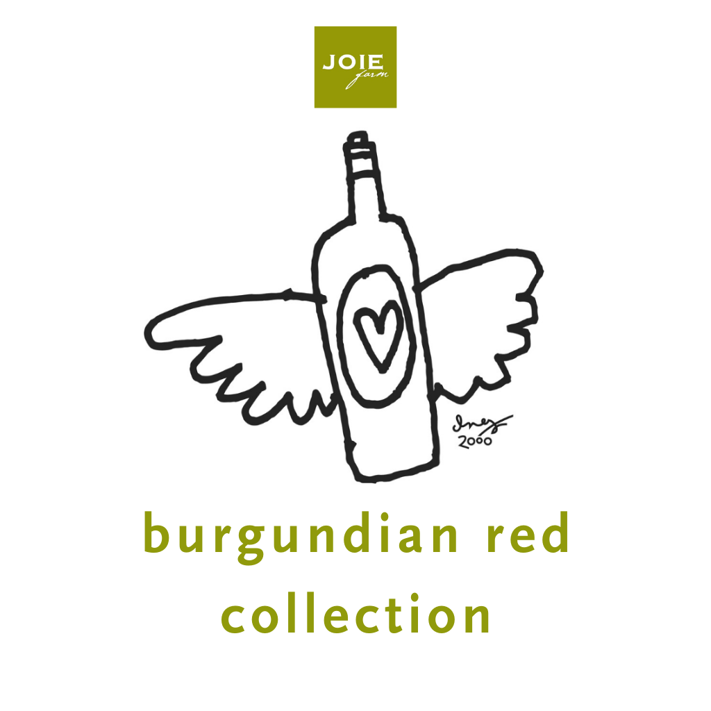 SUBSCRIPTION - Burgundian Red Collection (12 bottles)