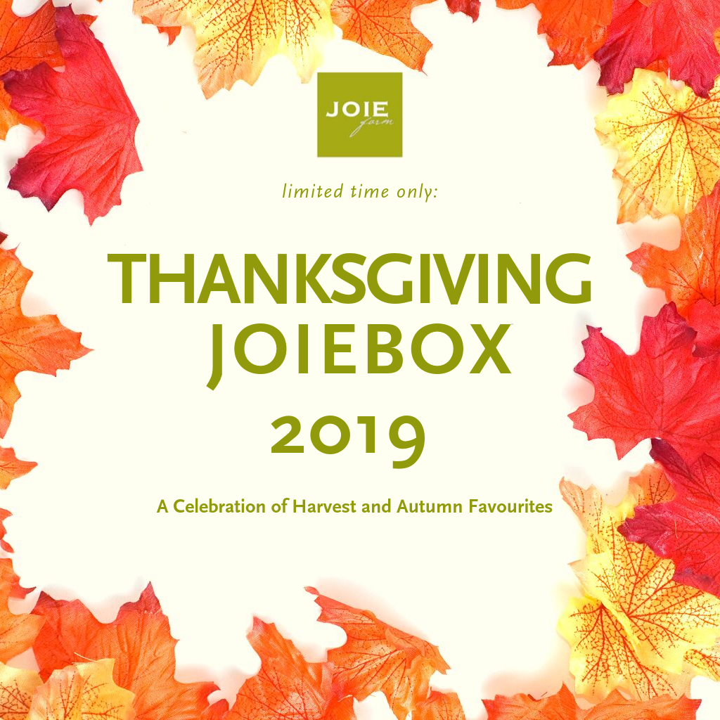 2019 Thanksgiving JoieBox
