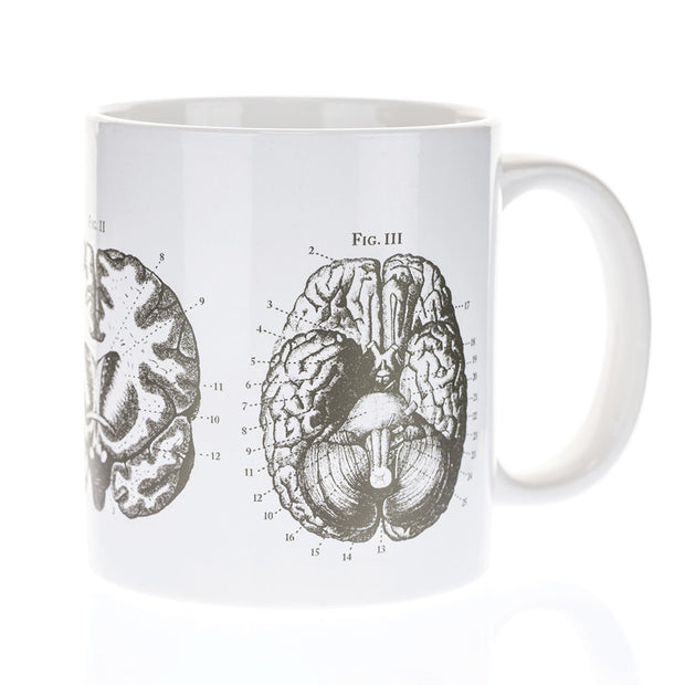 The Anatomical Brain 20 oz Mega Mug