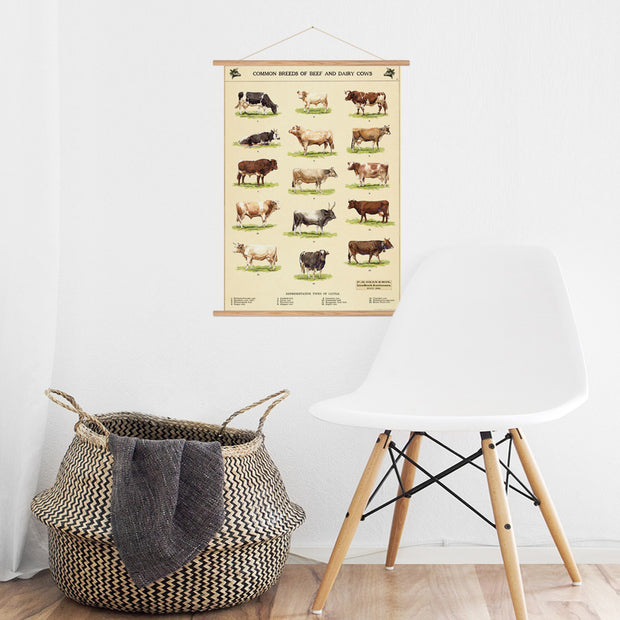 Vintage Style Cow Chart