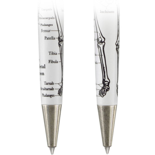 The Dr. Gray F.R.S. Anatomy Pen