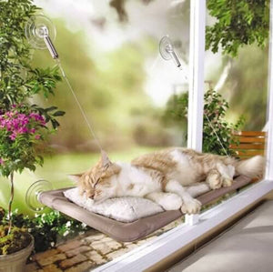 Large Hanging Cat Bed - Window Cat Perch