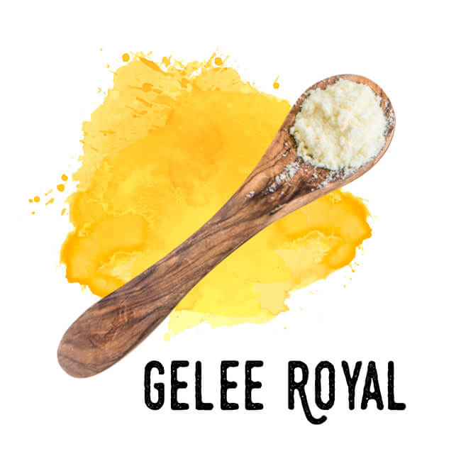 gelee royal pulver bio