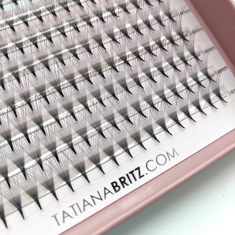 TB Pro Fans - TB lashes.brows.beauty