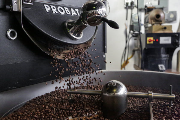 Freshly roasted coffee pouring out of a coffee roaster