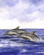 """Two Dolphins"" Boxed Note Cards Original Watercolor by Brad Tonner"