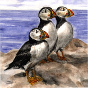 """Puffins"" 11oz Ceramic Mug Original Watercolor by Brad Tonner"