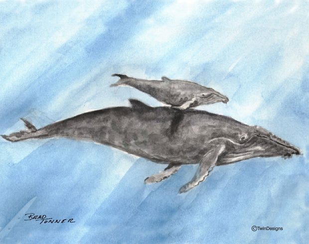 """Humpback Whale"" Boxed Note Cards Original Watercolor by Brad Tonner"