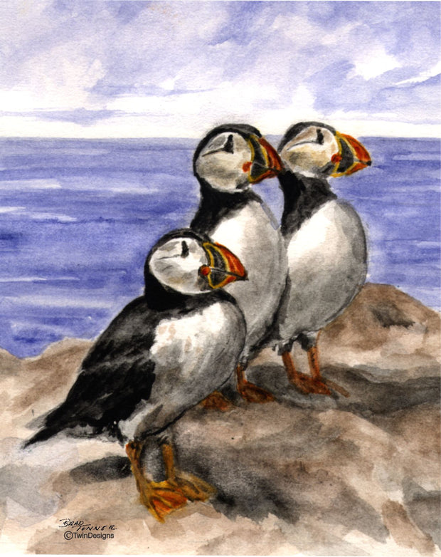 """Puffins"" Boxed Note Cards Original Watercolor by Brad Tonner"