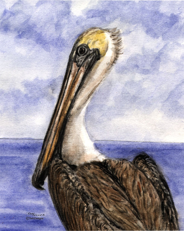 """Pelican"" Boxed Note Cards Original Watercolor by Brad Tonner"