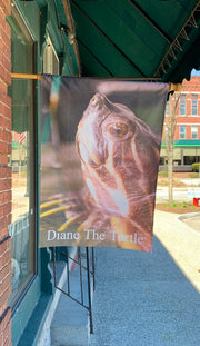 """Diane The Turtle"" House Flag Original Photograph by Jim Tonner"